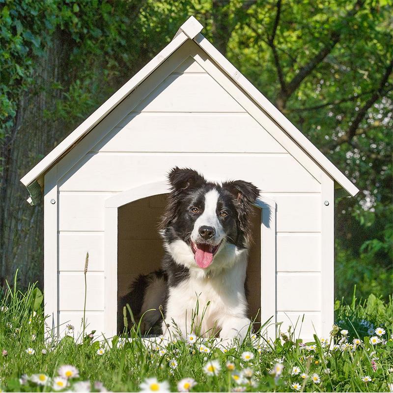 Hundehuette-XXL-weiss-005.jpg