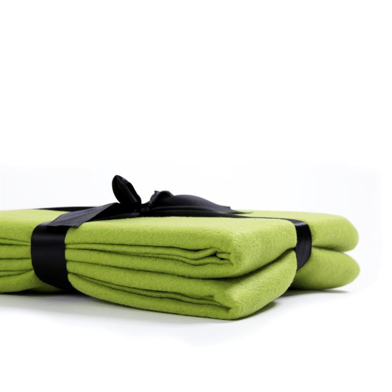 Polar-Fleece-Decke-Kiwi-Gruen-220x240cm-002.jpg